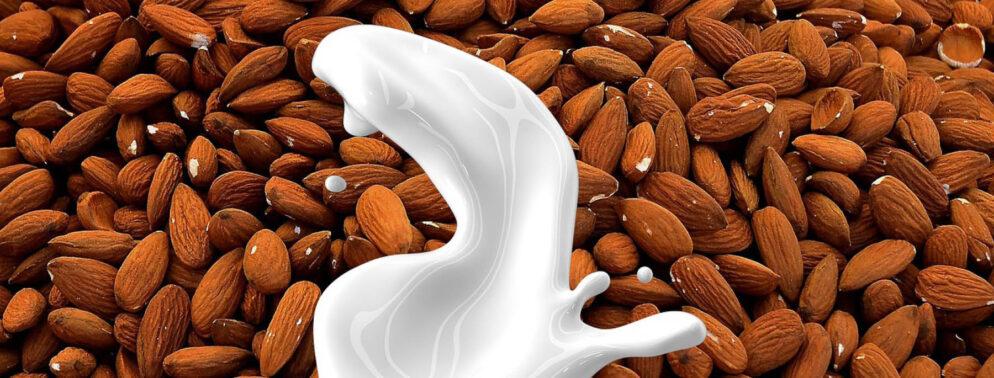 laktómentes növényi tej mandulatej receptek.at